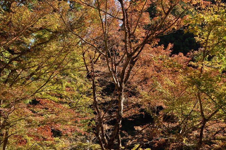 両界山横蔵寺_e0170058_15560654.jpg