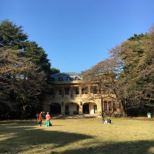 11月月例会 駒場公園_a0094959_14055824.jpeg