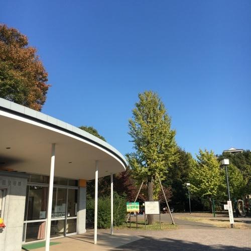 11月月例会 駒場野公園_a0094959_15073183.jpeg