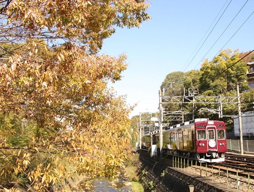 能勢電鉄 平野駅にて 秋・・_d0202264_839444.jpg