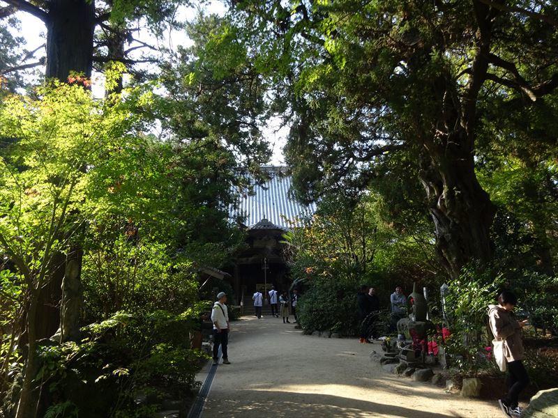 自転車遍路(高知~愛媛)5日目_e0201281_20460741.jpg