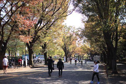 今日は久しぶりにK公園にお散歩に♪_c0090198_17210228.jpg