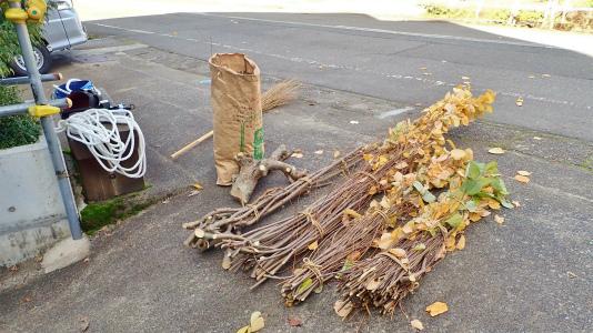 兼業農家の冬準備は庭木の剪定から・・・②_c0336902_20021531.jpg