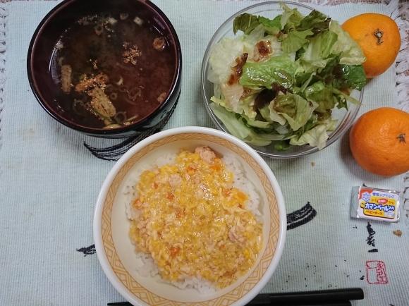 11/11 トップバリュ 低糖質親子丼セット@自宅_b0042308_10005065.jpg