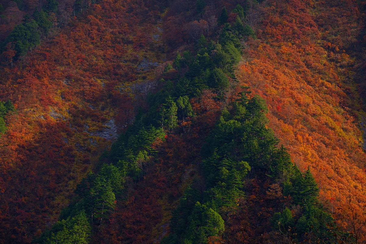 谷川岳で Mt.Tanigawadake #FUJIXPRO2_c0065410_21085262.jpg