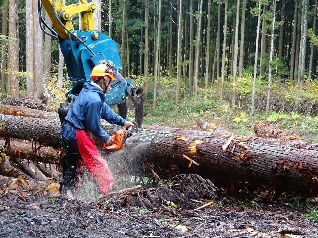 木材の伐採現場の見学へ行ってきました!_f0105112_04044211.jpg