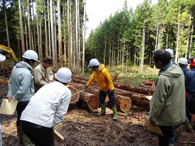 木材の伐採現場の見学へ行ってきました!_f0105112_04044277.jpg