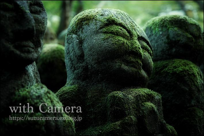 カメラとともに_f0100215_18273329.jpg