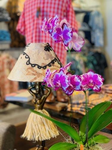 キホロカイのお店がオープンして1ヶ月が経ちました。 💞_c0187025_09034651.jpg