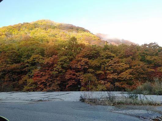 紅葉の福島へ_c0162128_18445890.jpg