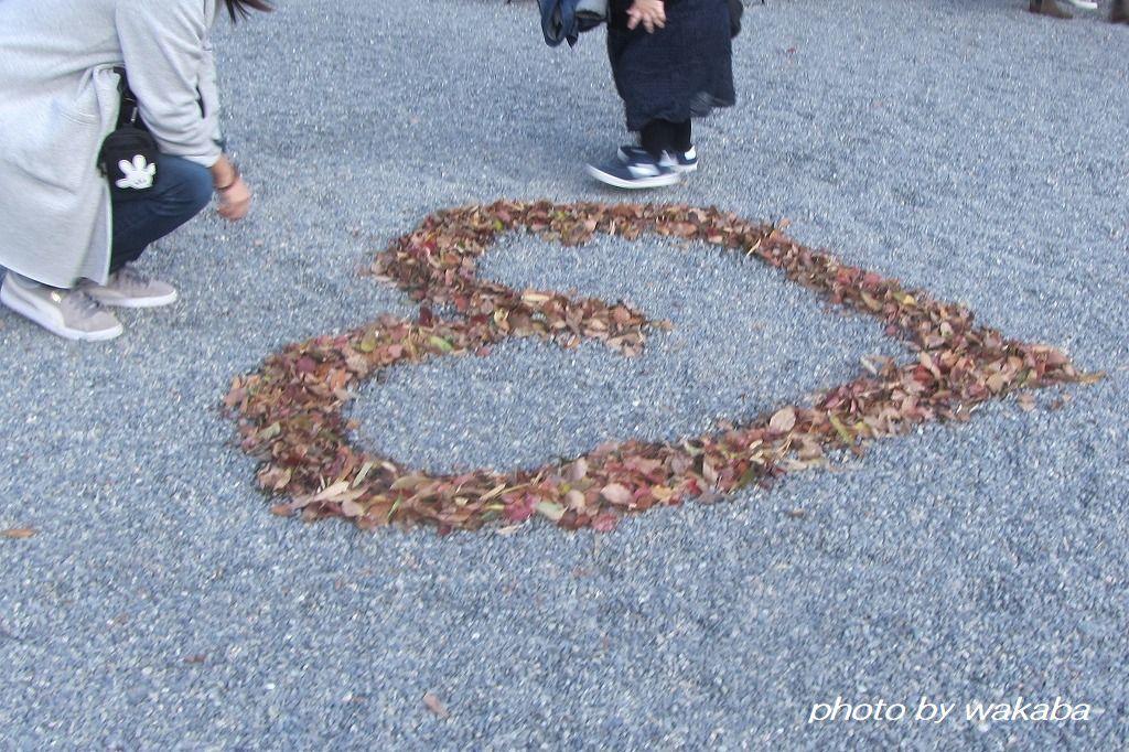 熱海来宮(あたみきのみや)神社でご利益を(*^-^*)_e0052135_07061417.jpg