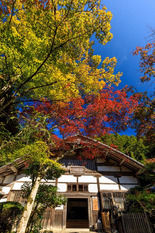 紅葉が彩る京都2019 染まり始めた常照皇寺_f0155048_22381520.jpg