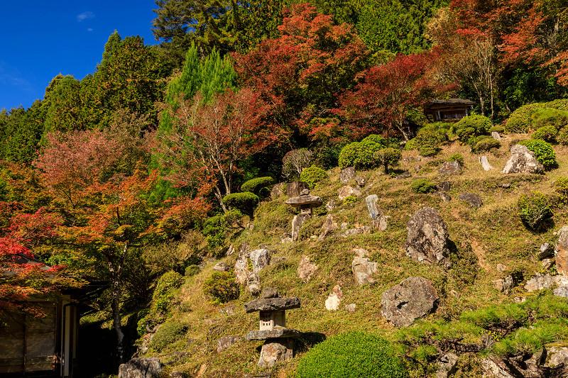 紅葉が彩る京都2019 染まり始めた常照皇寺_f0155048_22382672.jpg