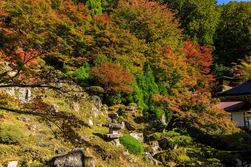 紅葉が彩る京都2019 染まり始めた常照皇寺_f0155048_22383754.jpg