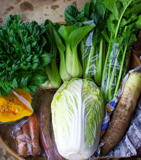 今週の野菜セット(11/12~11/16着)_c0110869_13045675.jpg