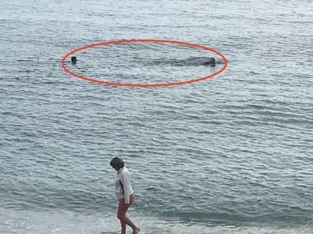 11月のモンテロッソも泳ぐ人たち_a0136671_00250596.jpeg