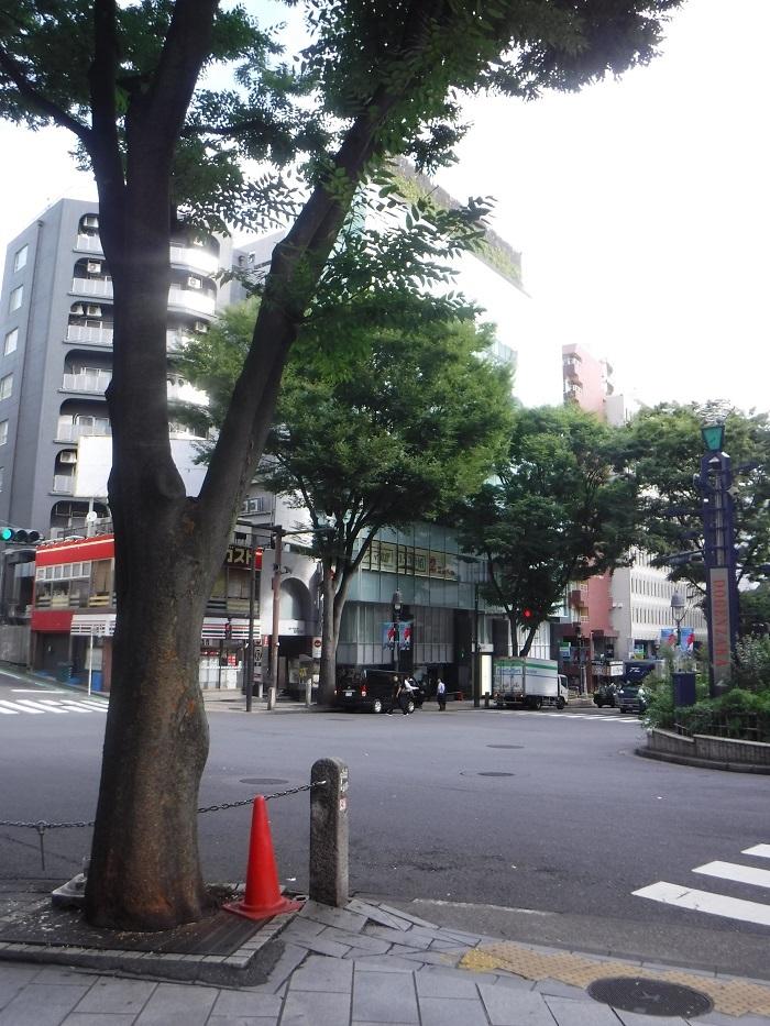 ◆東京出張研修 ~地震に備える集い~_f0238779_20505987.jpg