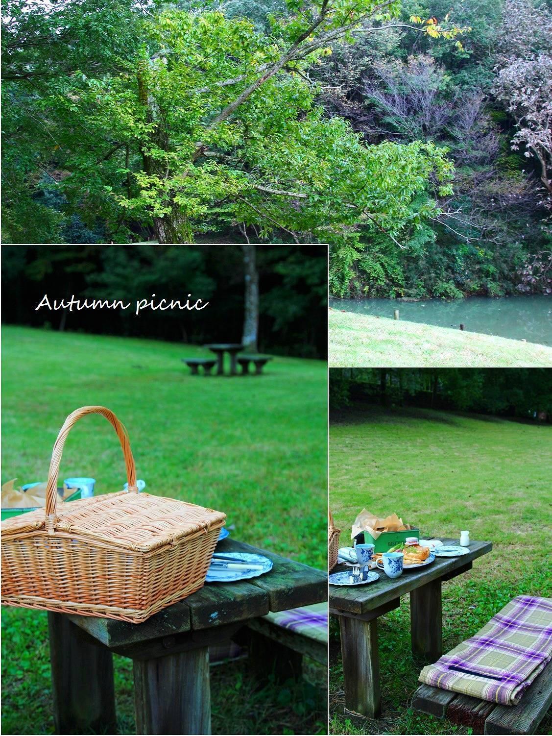 秋のピクニック_a0107981_15005828.jpg