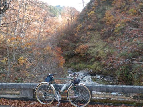陽 の あたる 坂道 を 自転車 でかけ のぼる