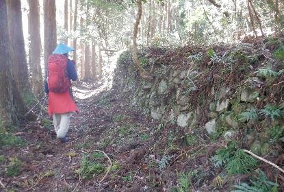 熊野古道は杉の道_e0077899_934436.jpg
