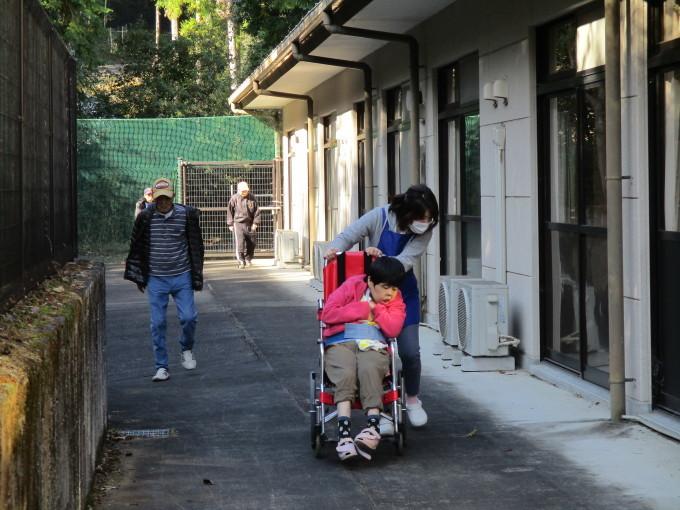 11/8 散歩_a0154110_09231155.jpg