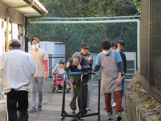 11/8 散歩_a0154110_09231771.jpg