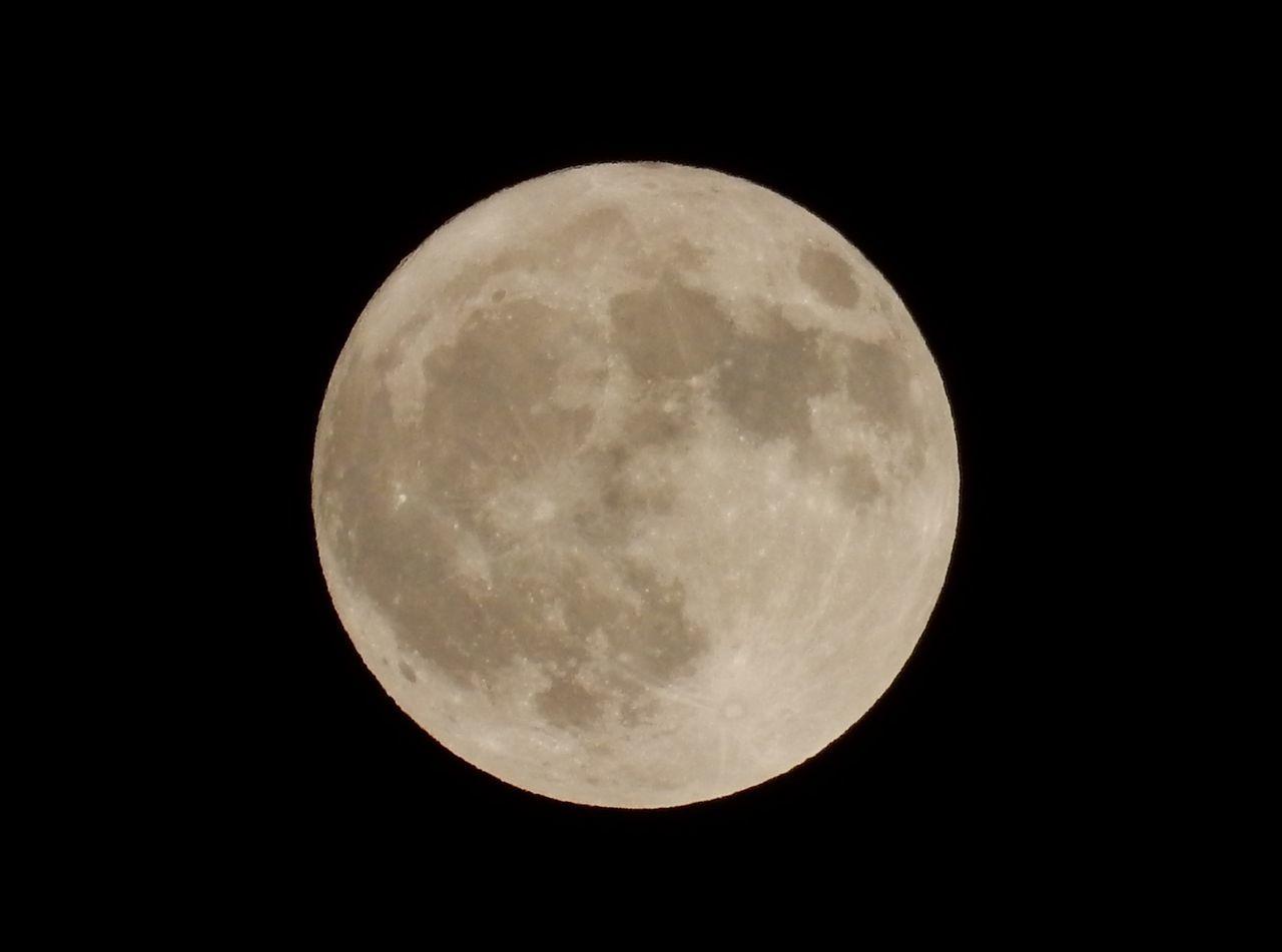 なんとか満月が見えました_c0025115_20433483.jpg