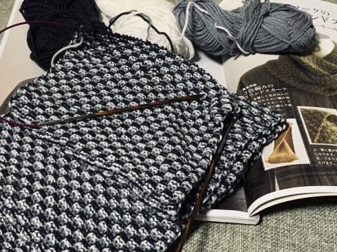 編みかけ編み編み。。。_f0376319_21014395.jpeg