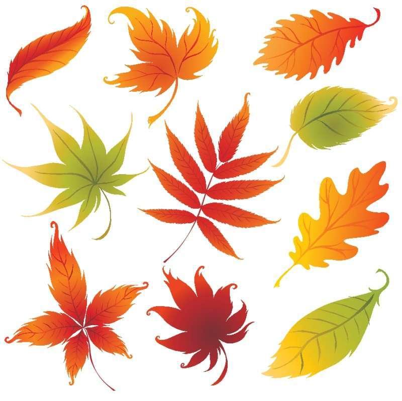 秋が、段々遠ざかる。・・・_c0157523_06350694.jpg