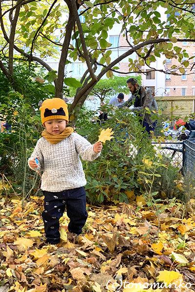 秋色パリの公園の落ち葉拾い_c0024345_20503504.jpg