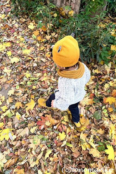 秋色パリの公園の落ち葉拾い_c0024345_20503653.jpg