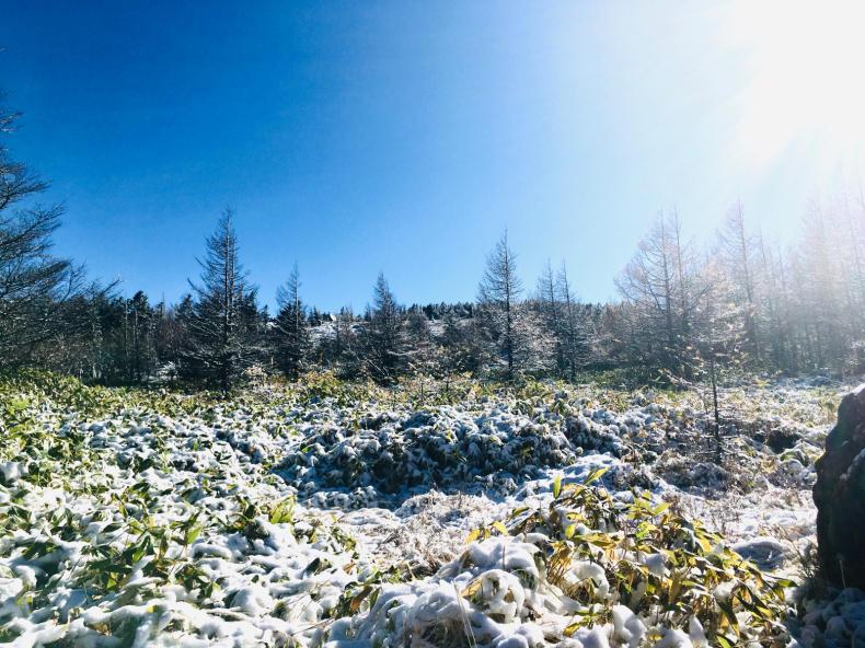 山はもう雪_b0404748_20214558.jpg