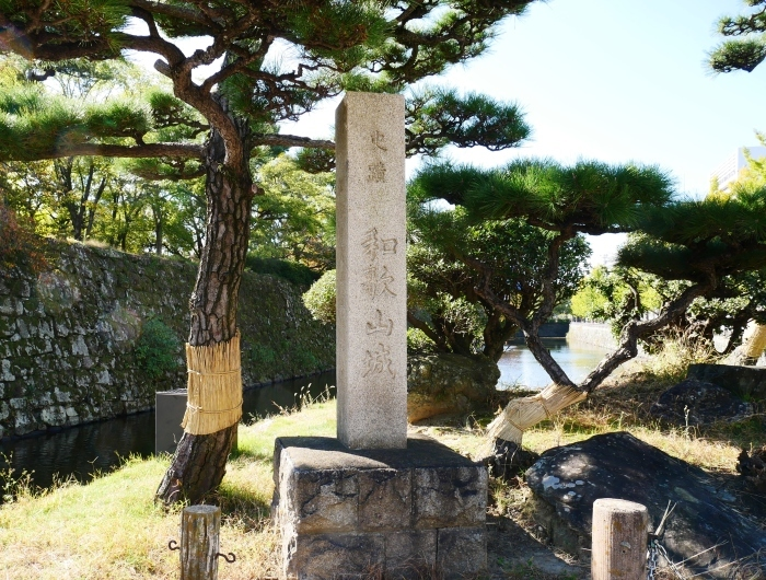 和歌山城のこも巻き  2020-01-25 00:00  _b0093754_13355781.jpg
