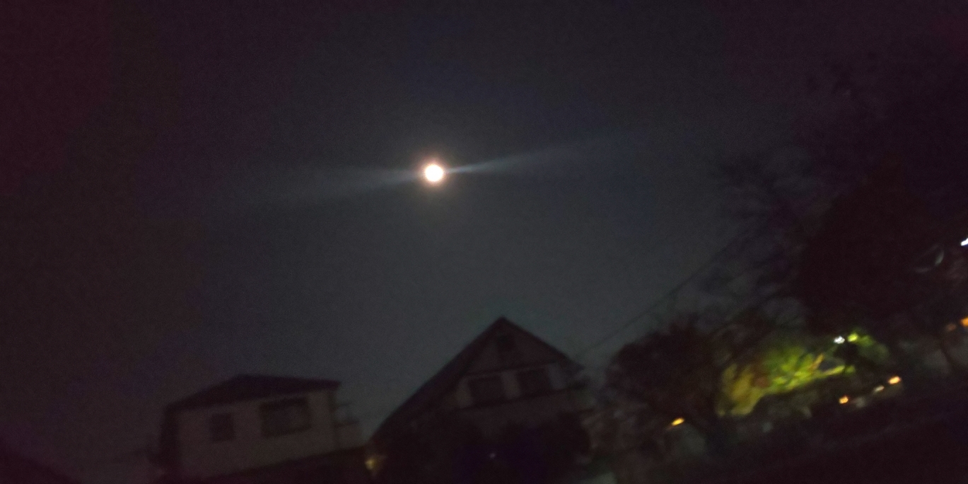 今夜は満月_c0064859_17363545.jpg