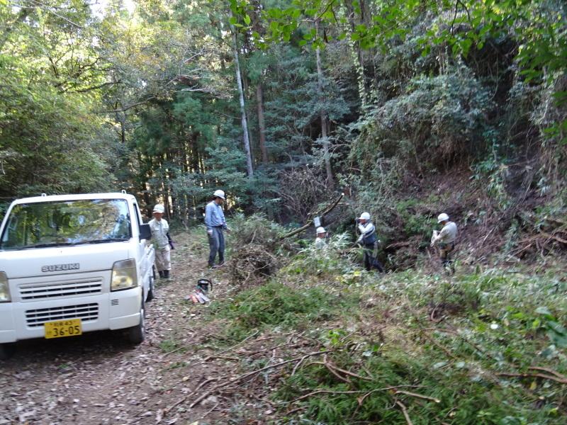 台風被害処理が続く・・・孝子の森_c0108460_16554350.jpg