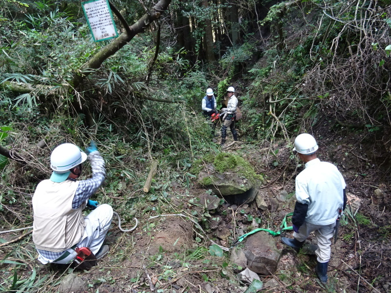 台風被害処理が続く・・・孝子の森_c0108460_16572194.jpg