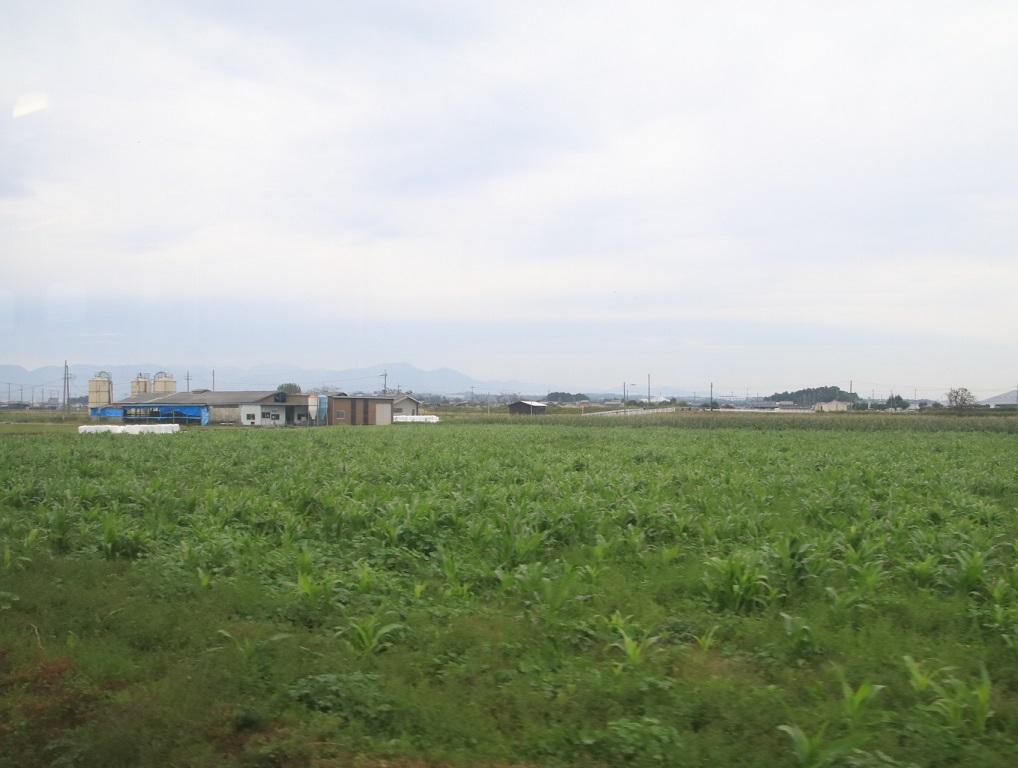 JR彦根駅から近江鉄道乗車 _d0202264_9334496.jpg