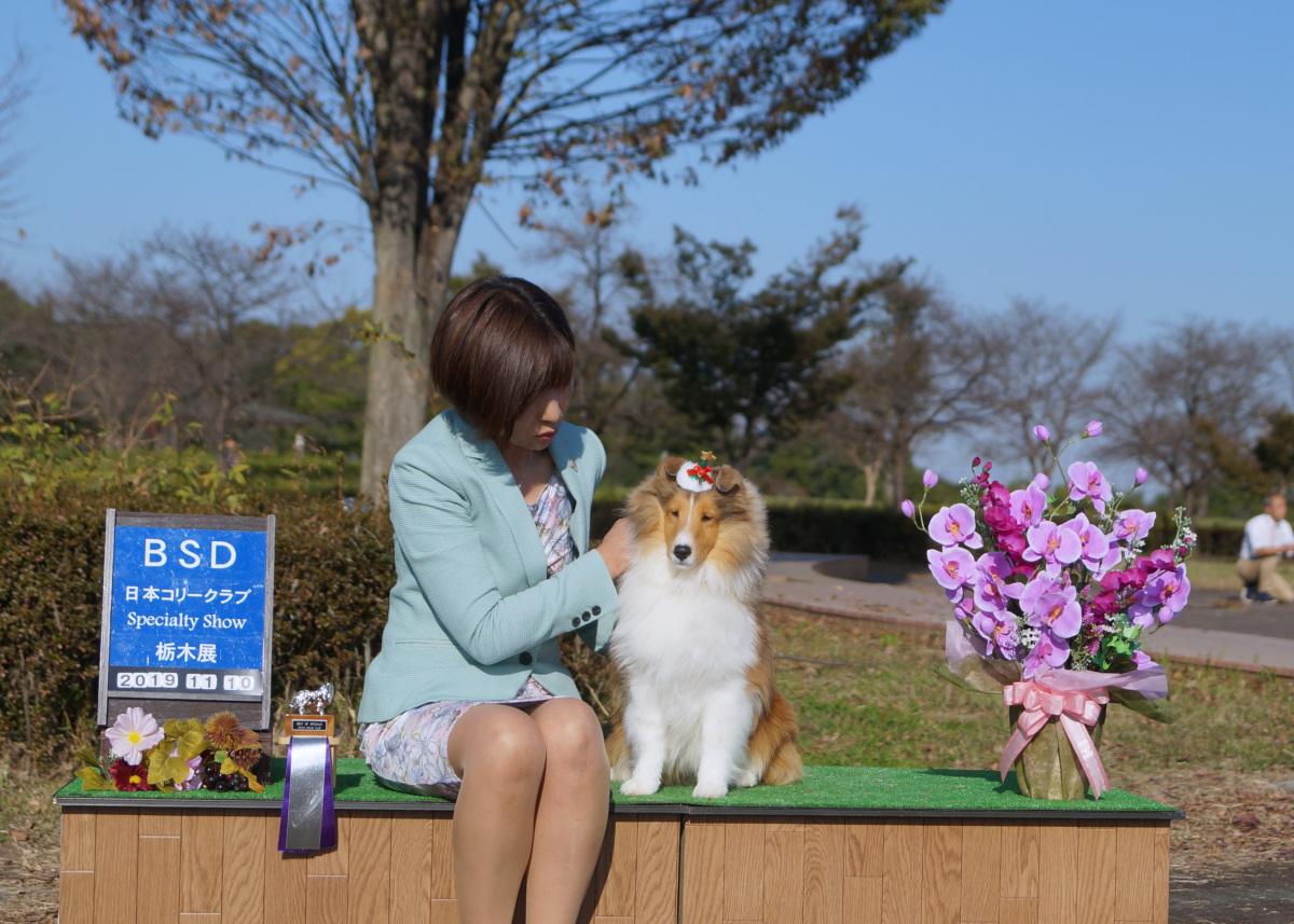 ディランの写真をなな松さんからお写真頂きました!_a0139367_20271886.jpg