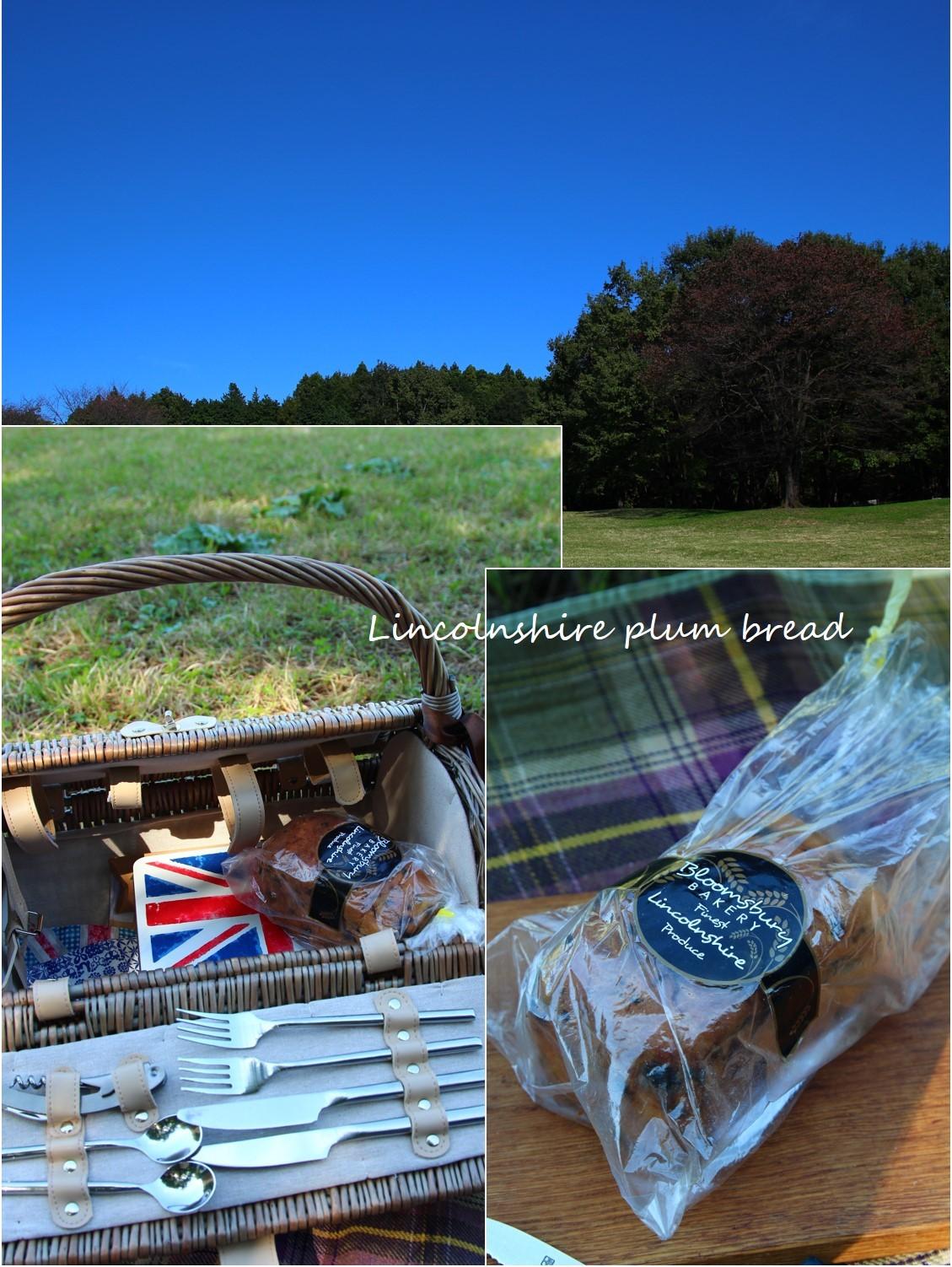秋のピクニック_a0107981_11215740.jpg
