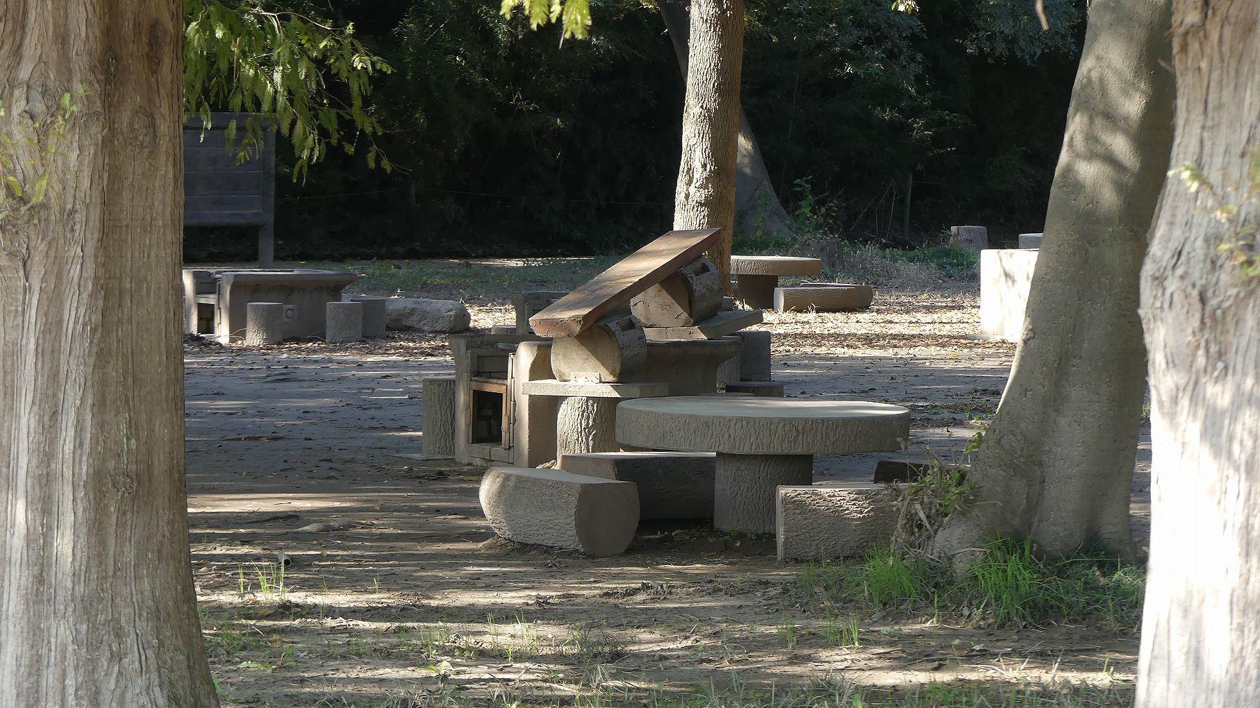 秋ヶ瀬公園ふたりぼっち 【 2019 11/9(土) 】_a0185081_11053764.jpg