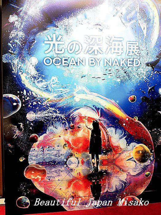 光の深海展 横浜 アソビル・゚☆、・:`☆・・゚・゚☆。。_c0067206_09360342.jpg