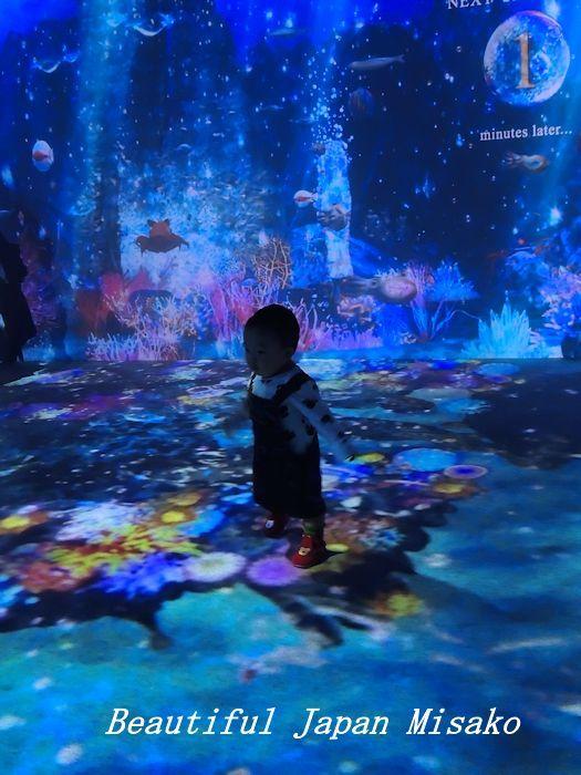 光の深海展 横浜 アソビル・゚☆、・:`☆・・゚・゚☆。。_c0067206_09360688.jpg