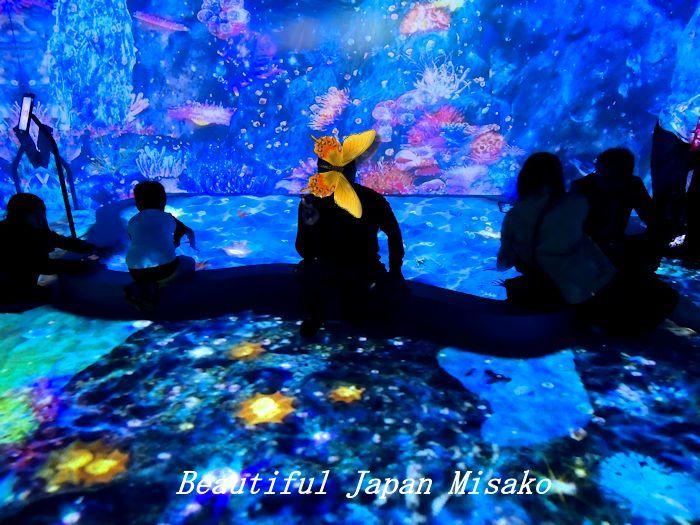 光の深海展 横浜 アソビル・゚☆、・:`☆・・゚・゚☆。。_c0067206_09361124.jpg