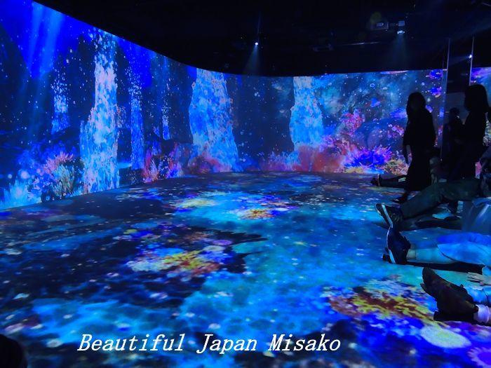 光の深海展 横浜 アソビル・゚☆、・:`☆・・゚・゚☆。。_c0067206_09361158.jpg