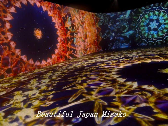 光の深海展 横浜 アソビル・゚☆、・:`☆・・゚・゚☆。。_c0067206_09361230.jpg