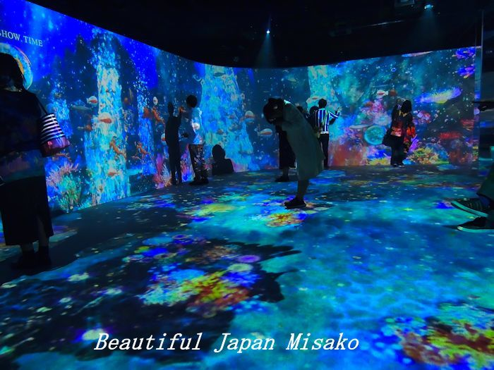 光の深海展 横浜 アソビル・゚☆、・:`☆・・゚・゚☆。。_c0067206_09361918.jpg