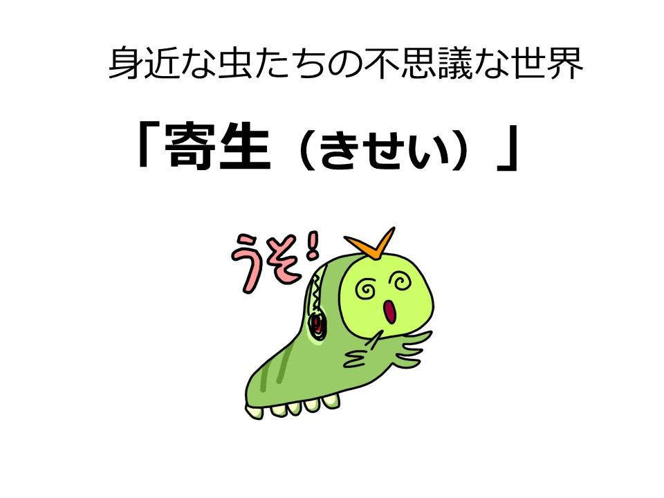 b0025008_1045931.jpg
