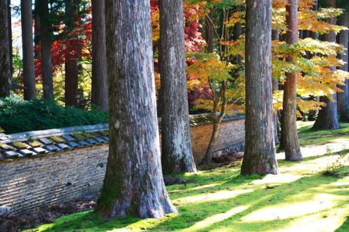 古峰神社の紅葉2_a0263109_15052787.jpg