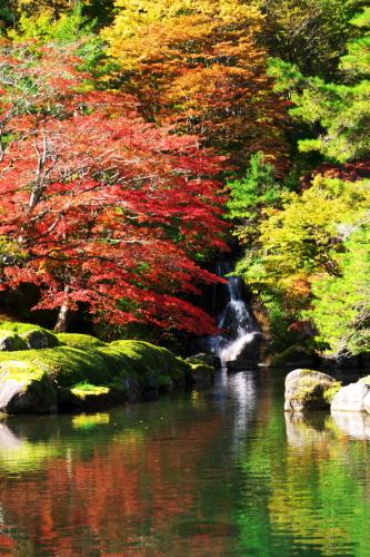 古峰神社の紅葉2_a0263109_15052836.jpg