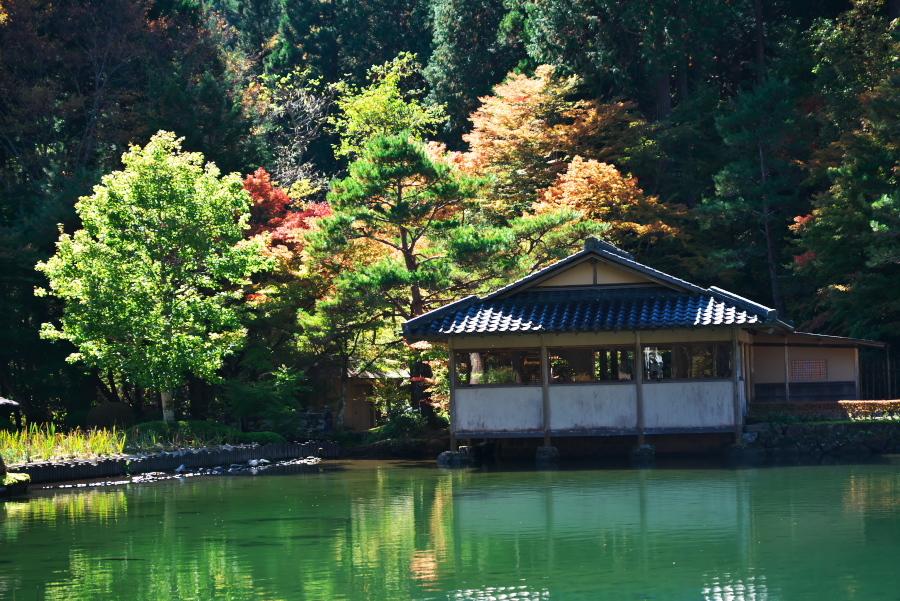 古峰神社の紅葉2_a0263109_15052897.jpg